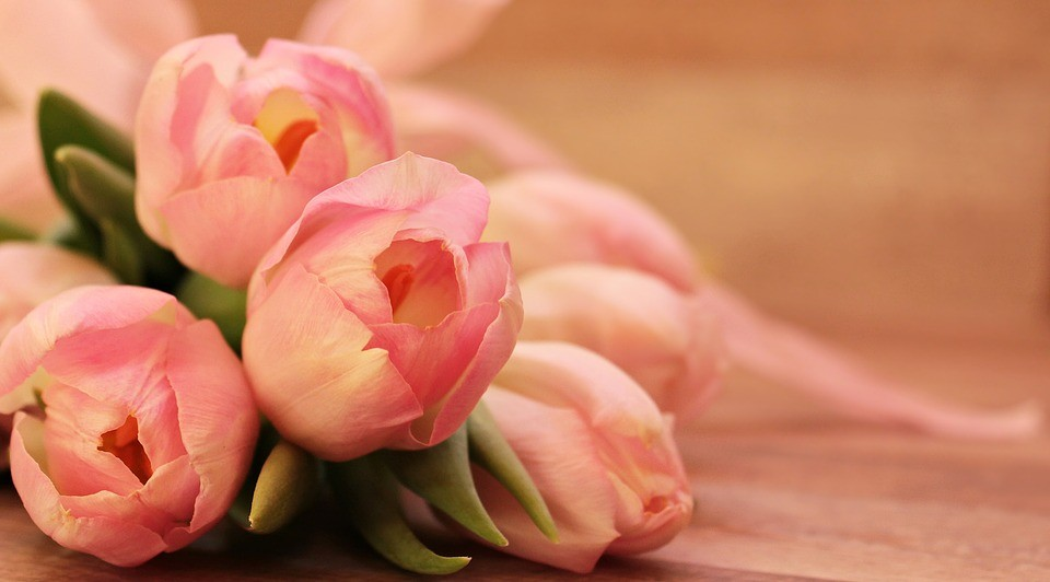 Akcesoria Florystyczne Czego Nie Może Zabraknąć W Kwiaciarni